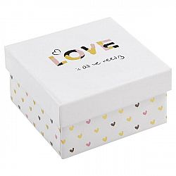 Box Úložný Love