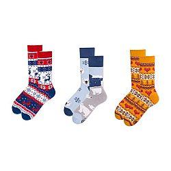 Sada 3 párů ponožek v dárkovém balení Many Mornings Winter Buddies, vel. 43–46